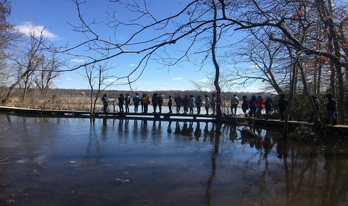 Photo of Guided tour across bridge over water