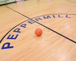 the center ring of peppermill basketball court with a basketball sitting on the court